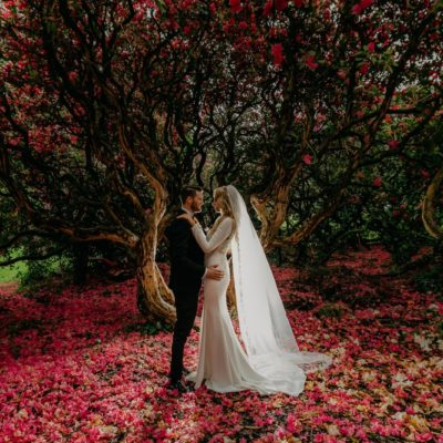 Wedding Photographers Northern Ireland